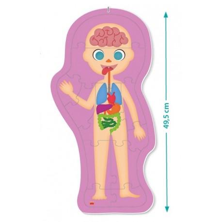 Le corps humain: comment suis-je?