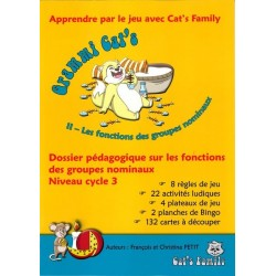 Grammi Cat's II, dossier fonction groupes nominaux